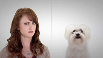 EverQuote TV Spot, 'The Perfect Dog Match'