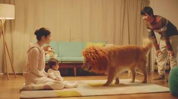 Amazon: Lion