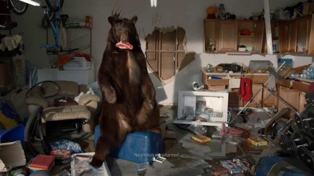 Farmers Insurance TV Spot, 'Bear Sighting' - iSpot.tv