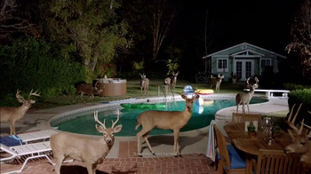 Farmers Insurance: Hall of Claims: Stag Pool Party: J. K. Simmons