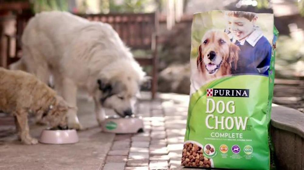 Is Iams Dog Food Made In Usa