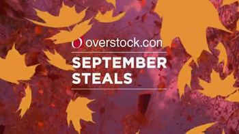 Overstock.com September Steals TV Spot, 'Prices are Falling'