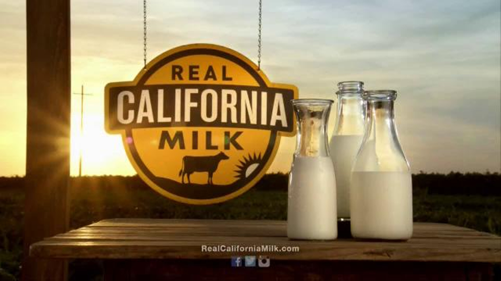 """cows milk and real california cheese 1 it's the cheese – real california cheese ® """"great cheese comes from happy cows"""" and happy farmers: the california milk advisory board's."""