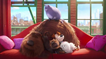 McDonald's: The Secret Life of Pets: Where Do They Go?