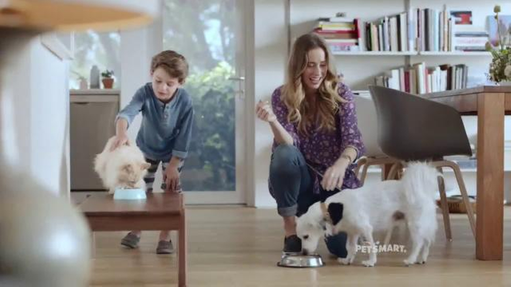 petsmart tv spot 39 chico bailey cat food 39 song by queen. Black Bedroom Furniture Sets. Home Design Ideas