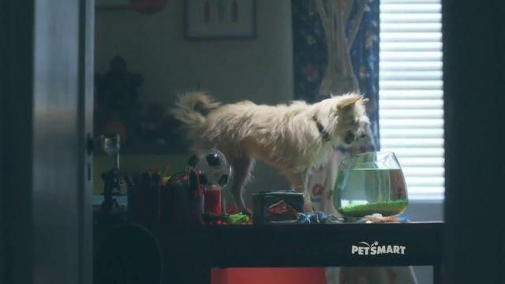 Petsmart November Weekend Sale Tv Commercial Good Boy