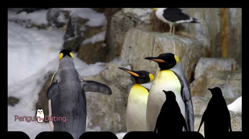 penguin dating site Find your shelf soulmate-or at least a fun potential book club partner- at penguin dating tagged as: book club, book news, dating site for bookworms, matchcom, online book reviews, online dating, penguin books, penguin dating.