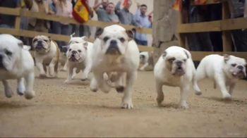 Running of the Bulldogs